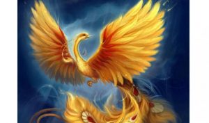 ancient-Magical-Phoenix